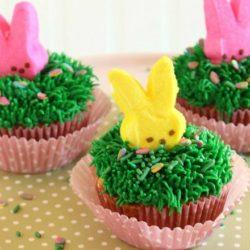 Cadbury mini egg cup cakes