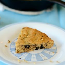 Gluten-Free Chocolate Chip Cake